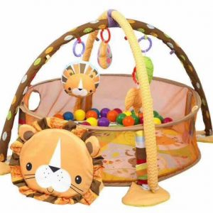 3 in 1 activity play gym